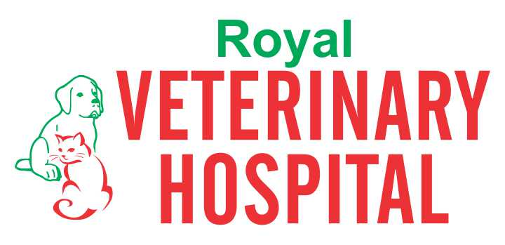 Royal Veterinary Hospital